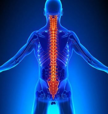Disc & Nerve Issues Asheville Chiropractic